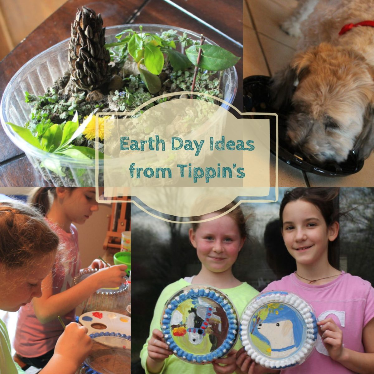 Earth Day Ideas from Tippin's